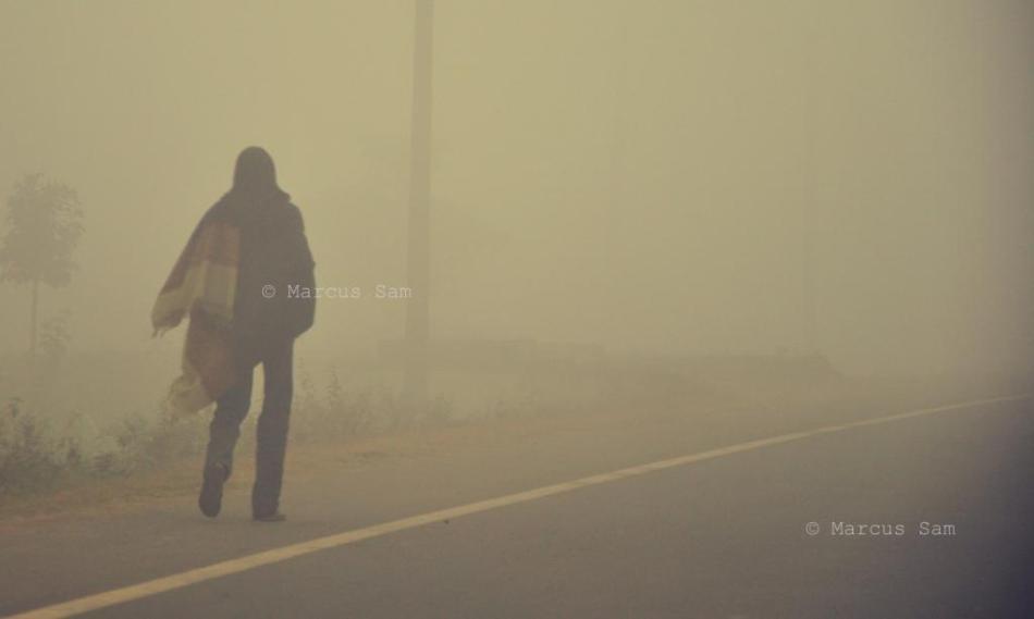 Lone Walker